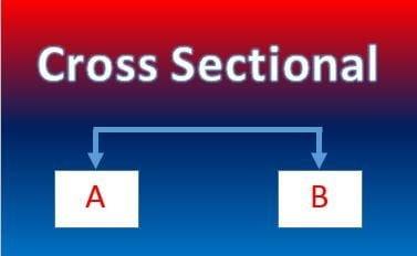 Cross Sectional Adalah