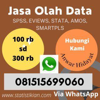 Jasa Analisis Statistik Online