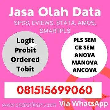 Jasa Olah Statistik